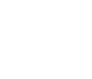Cassani Automotive